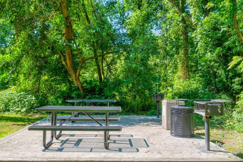 BBQ Picnic Area at The Timbers at Long Reach Apartments in Columbia , Maryland