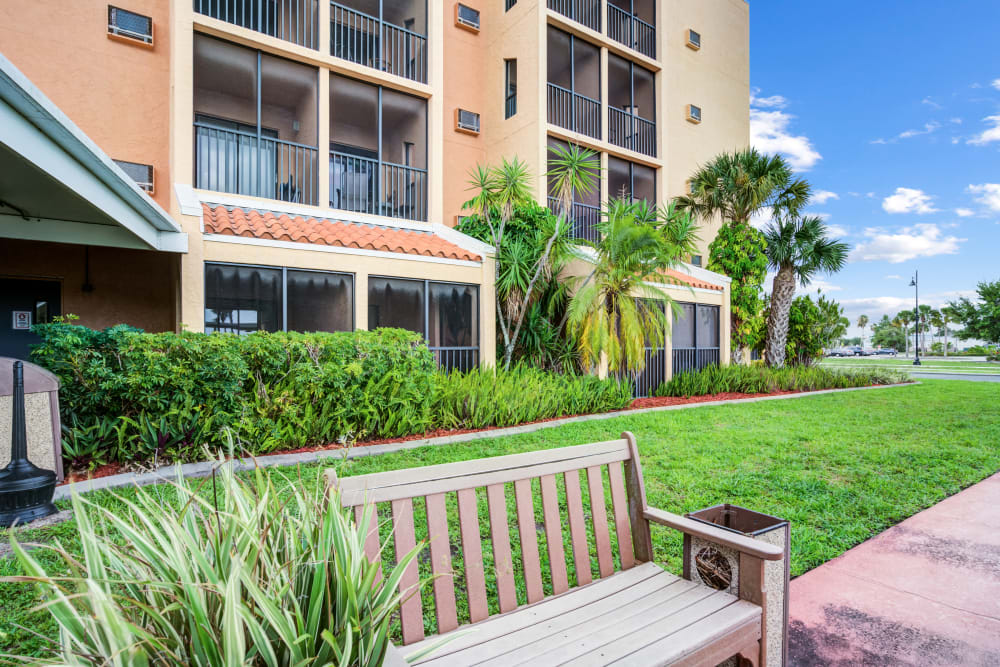 Park bench and grassy area outside building Truewood by Merrill, Port Charlotte in Port Charlotte, Florida.