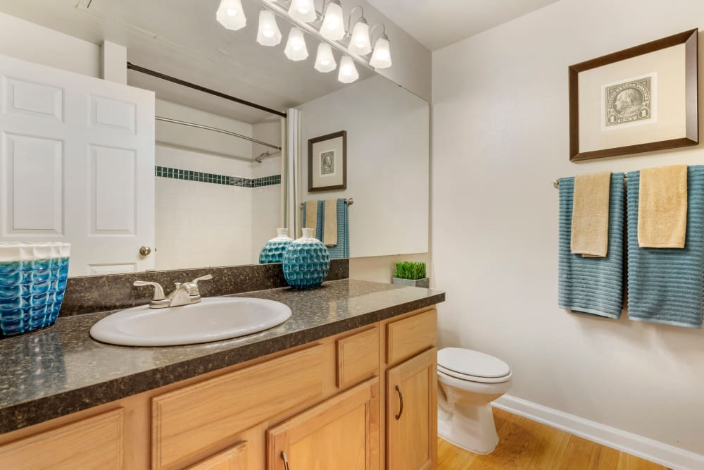 Bright model bathroom with a large vanity mirror and hardwood floors at Regency at First Colony in Sugar Land, Texas