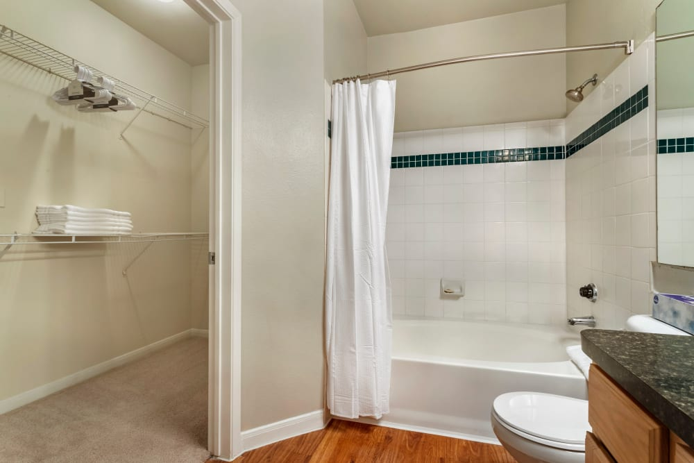 Bathroom with a spacious linen closet at Regency at First Colony in Sugar Land, Texas