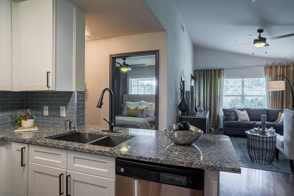 Kitchen with stone-top counters at Sunstone Village in Denton, Texas