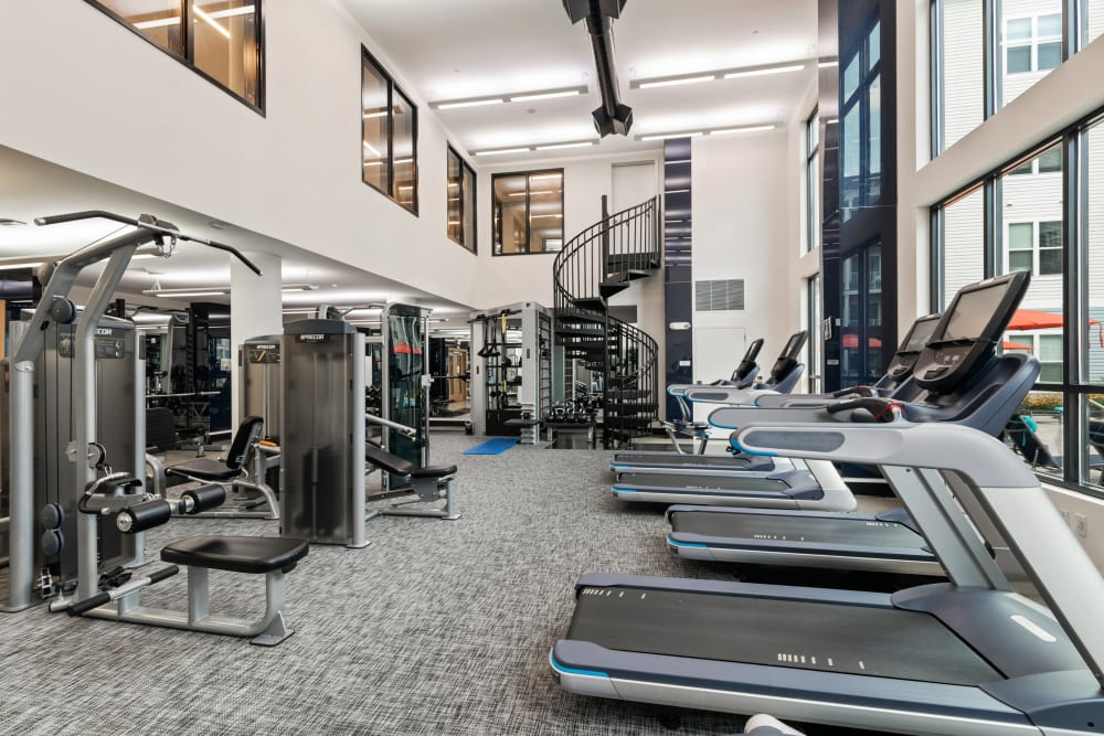 Get a good sweat at the gym in The Mark Parsippany in Parsippany, New Jersey