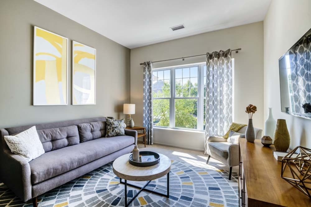 Living room space with comfortable couch and large windows for ample natural light at The Grove Somerset in Somerset, New Jersey