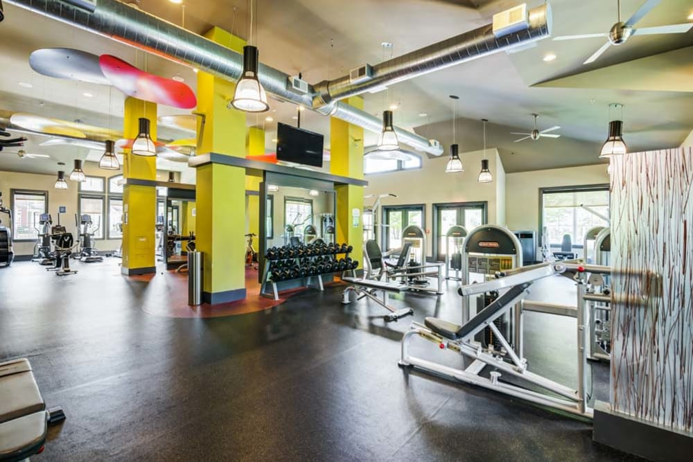 Spacious fitness center inside community clubhouse at The Grove Somerset in Somerset, New Jersey features modern workout equipment