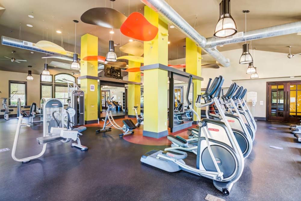 Community fitness center at The Grove Somerset in Somerset, New Jersey features treadmills, exercise bikes and other modern workout equipment