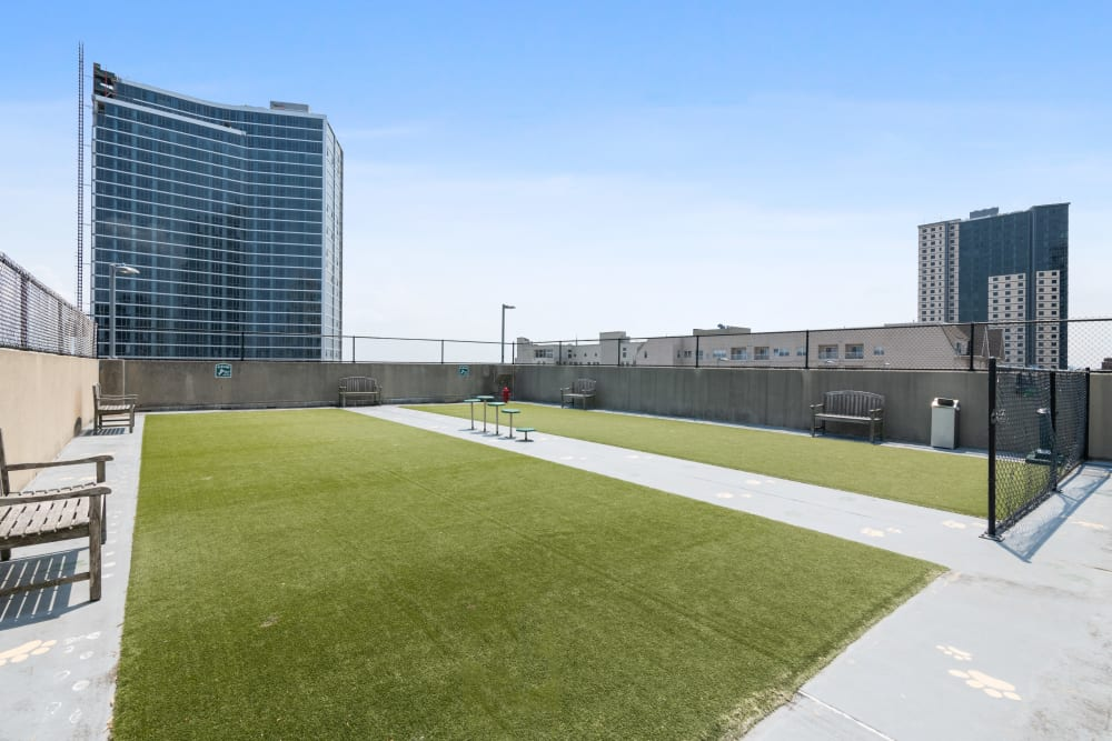 Roof top dog park at Skyline New Rochelle in New Rochelle, New York