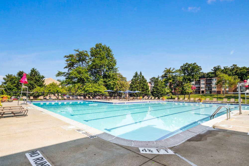 Outdoor lap pool at Cinnamon Run at Peppertree Farm in Silver Spring, Maryland