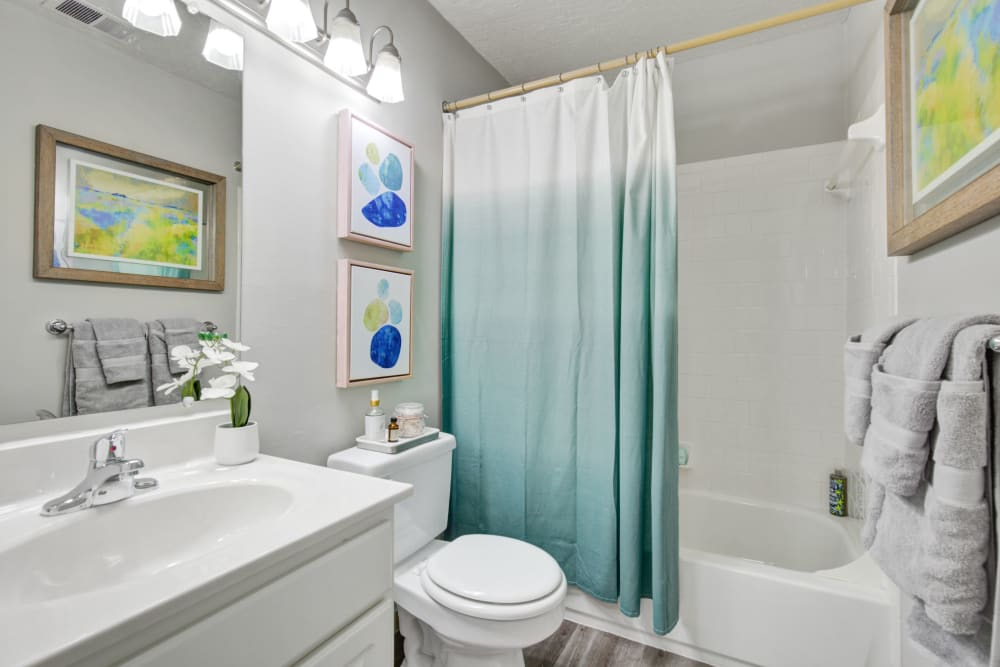 Bathroom at Country Village Apartments in Bel Air, Maryland
