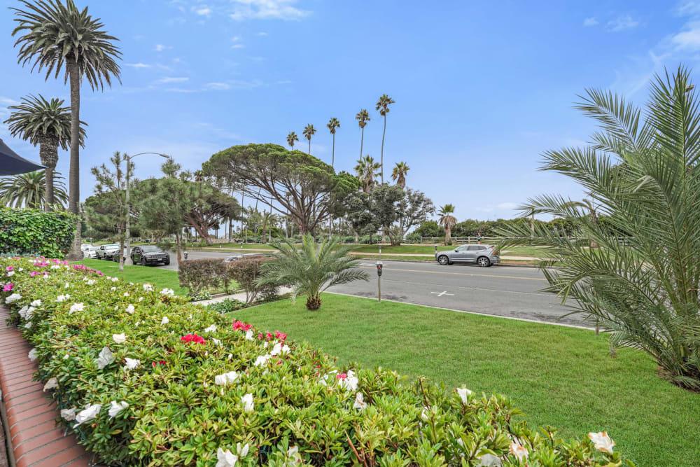 Flowers and palm trees outside of Meridian at Ocean Villa & Bella Mar in Santa Monica, California