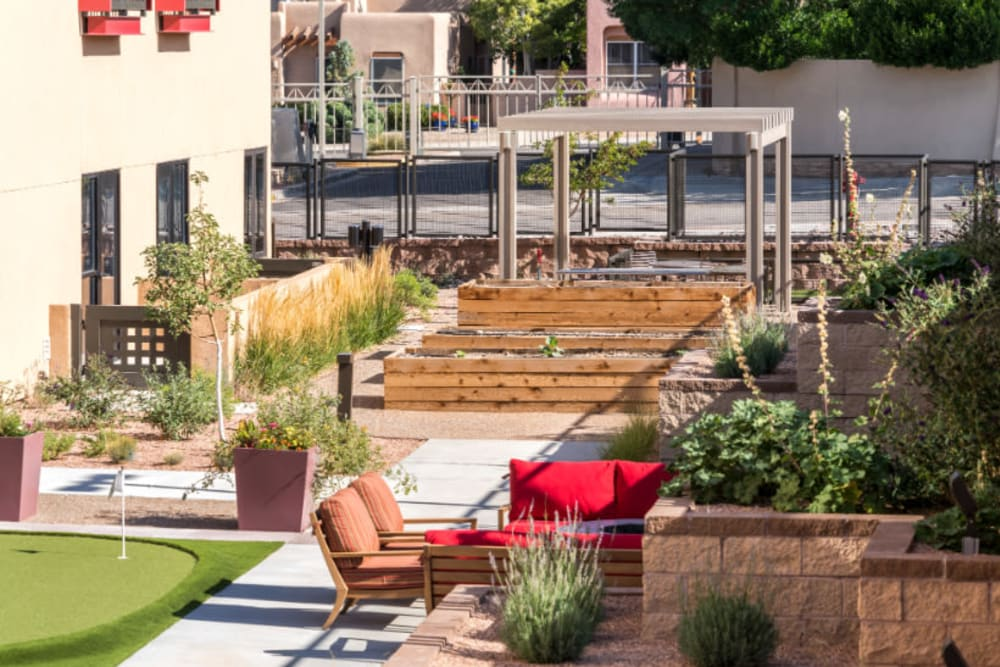 Community garden next to the putting green in the courtyard at Amaran Senior Living in Albuquerque, New Mexico