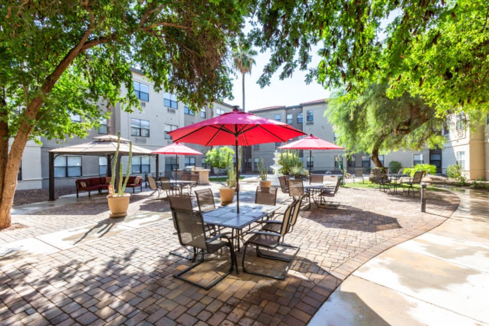 Shaded outdoor seating at Truewood by Merrill, Scottsdale in Scottsdale, Arizona