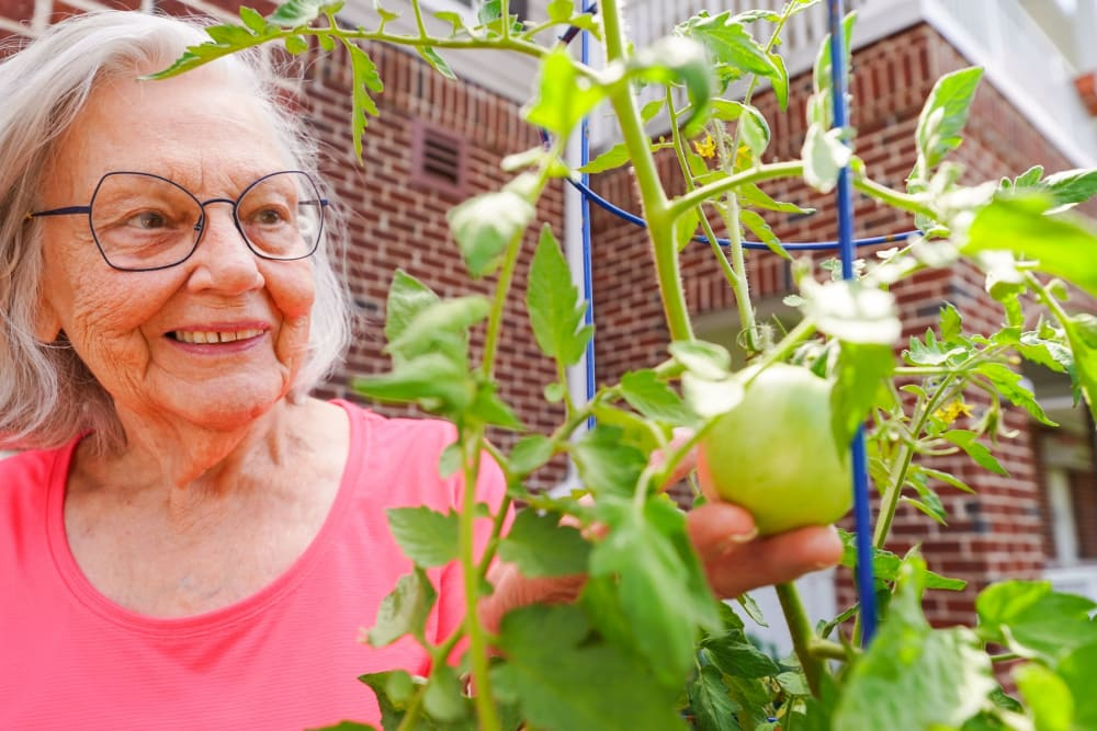 Resident gardening Harmony at Victory Station in Murfreesboro, Tennessee