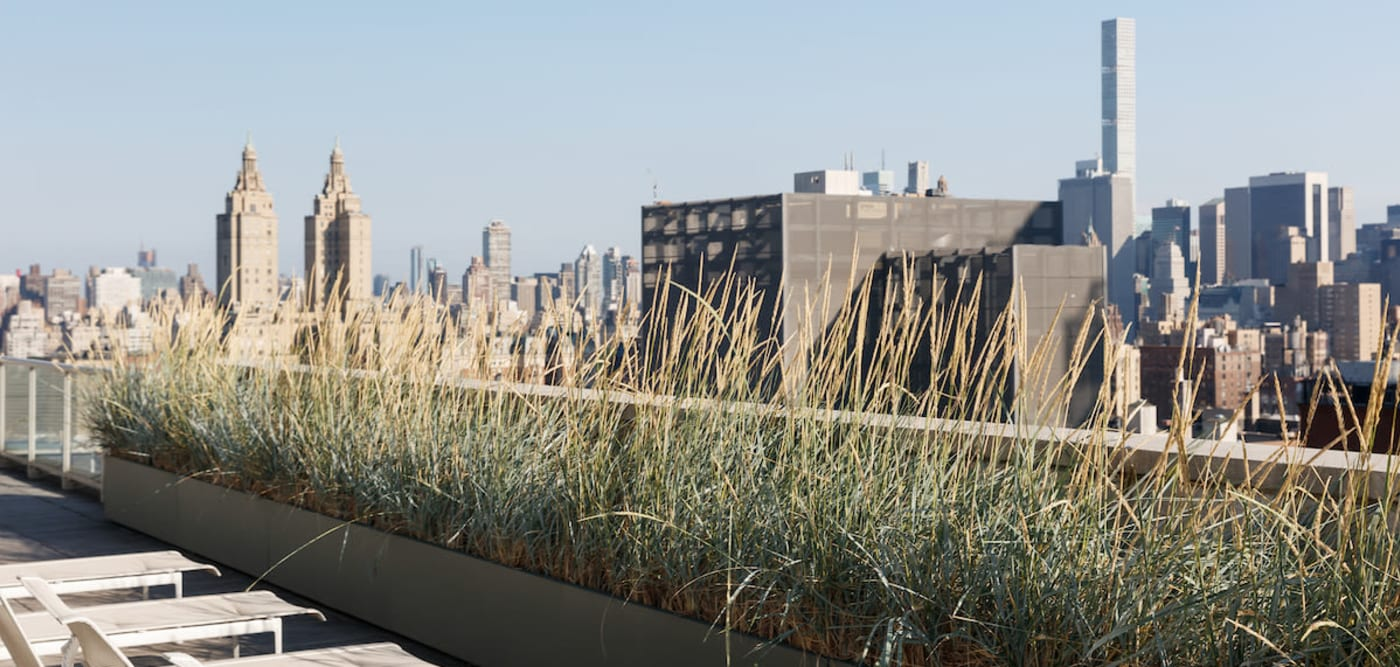 Roof top views at The Larstrand in New York, New York