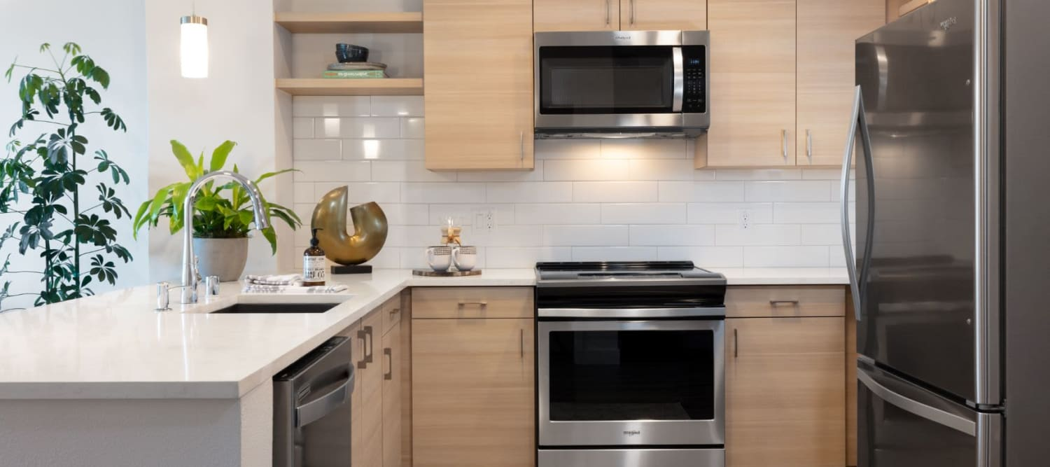 Gourmet Kitchens with Stainless Appliances at Sparq