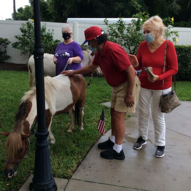 senior residents petting a pony