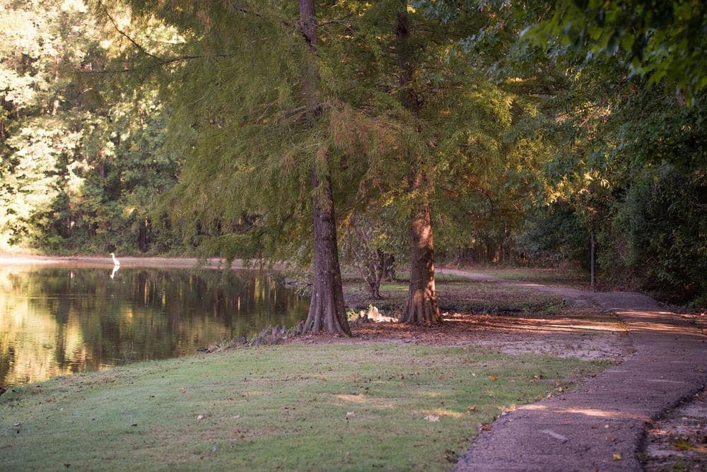 Beautiful walking paths at apartments in Ridgeland, Mississippi