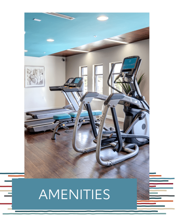 View the amenities at IMT Park Encino in Encino, California