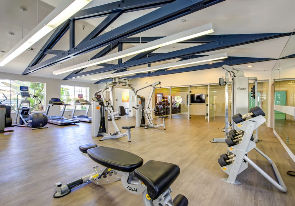 Newly Renovated Fitness Center. Fully Equipped