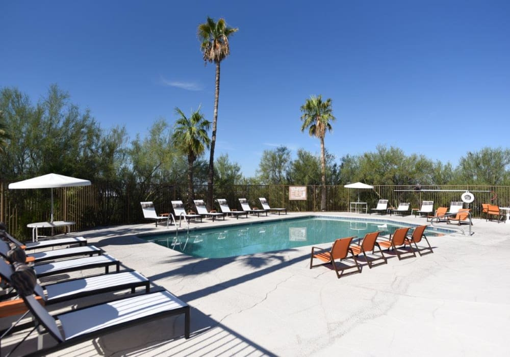 Poolside seating at Elevation Apartments in Tucson, Arizona