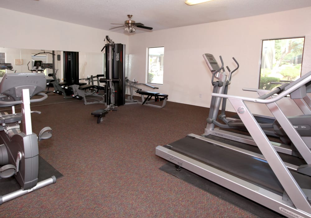 Modern fitness center at The Agave in Tucson, Arizona