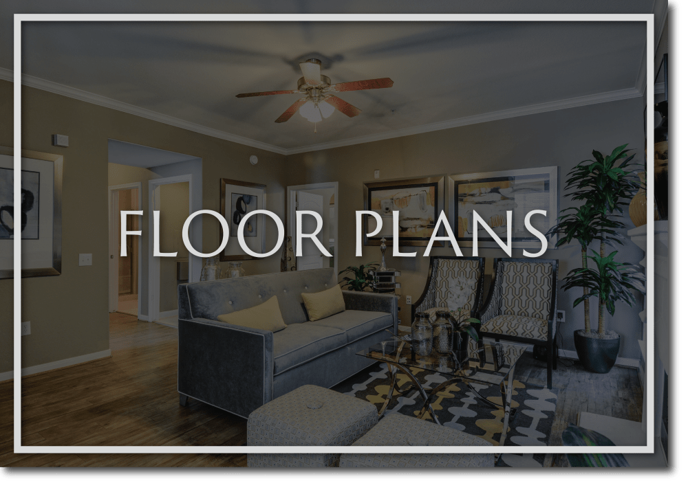View floor plans at San Paloma Apartments in Houston, Texas