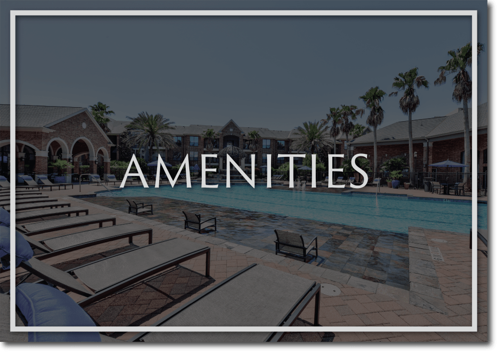 View amenities at San Paloma Apartments in Houston, Texas