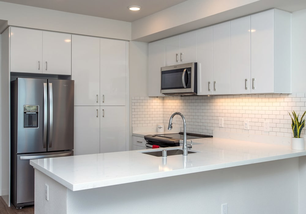 Apartments with boutique stainless steel appliances at Telegraph Arts