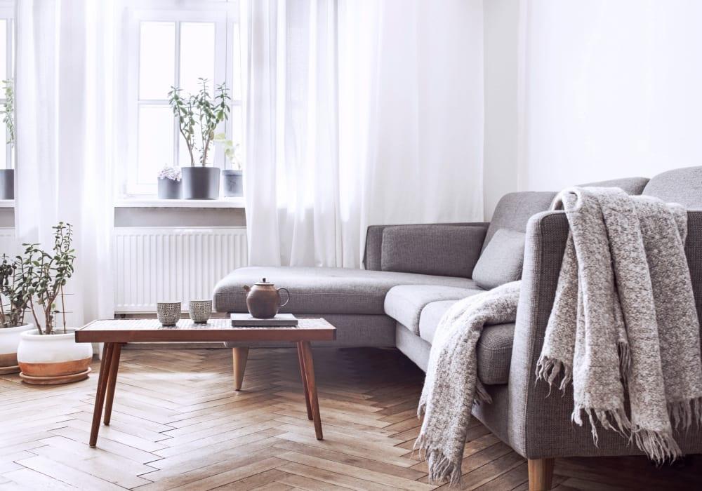 Bright living room at Caroline Apartments in Denton, Maryland