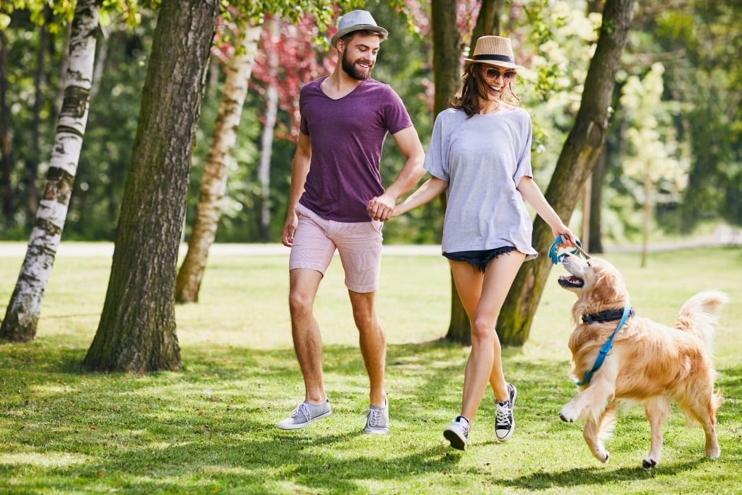 Resident couple and their dog playing on the green grass at our community at The Timbers at Long Reach Apartments in Columbia, Maryland