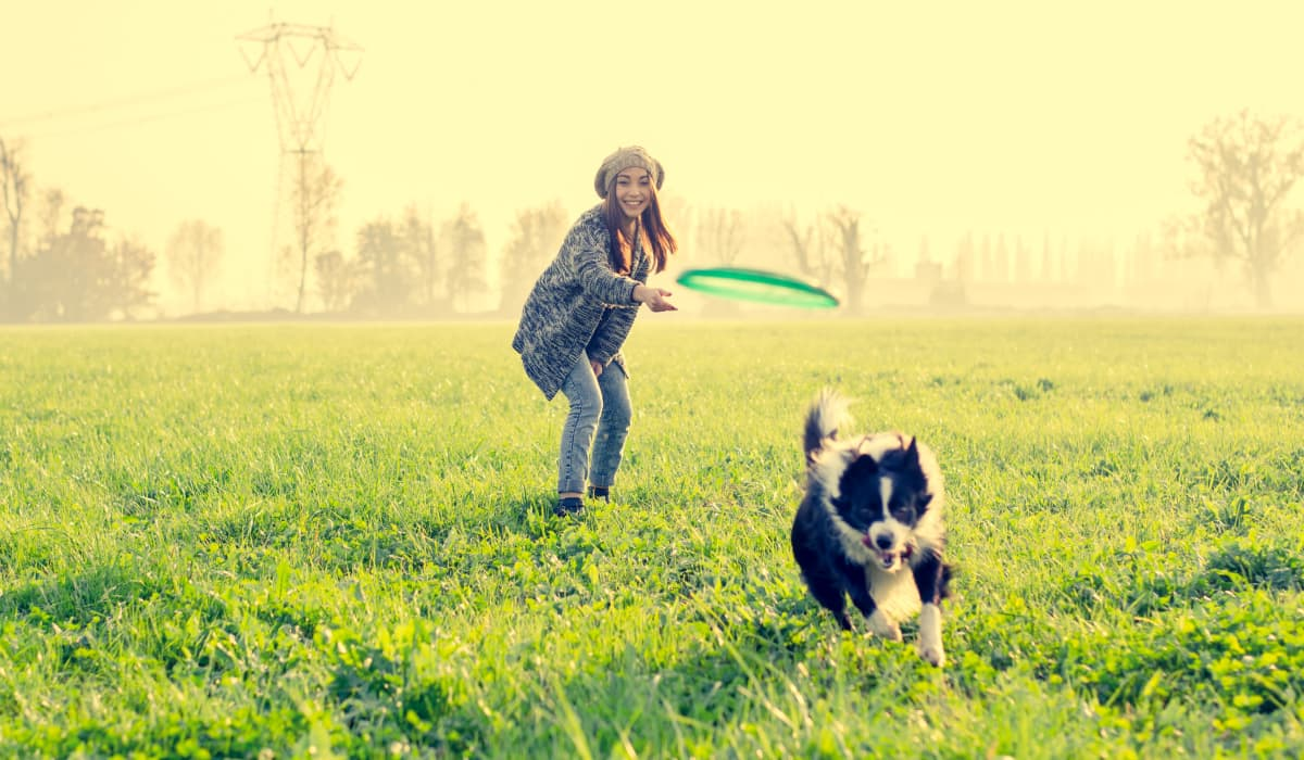 Resident playing fetch with her dog in a park near Cielo in Seattle, Washington