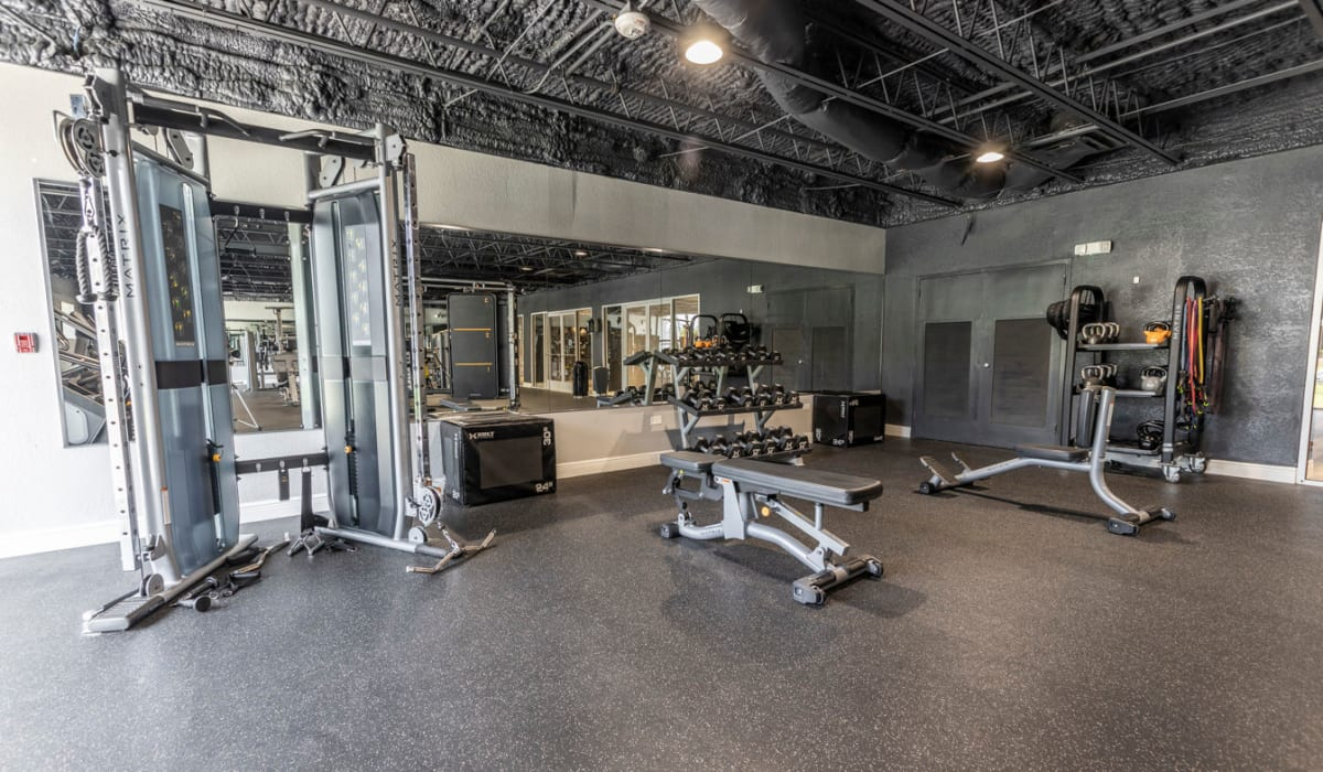 Plenty of individual workout stations in the fitness center at The Wayland in St Petersburg, Florida