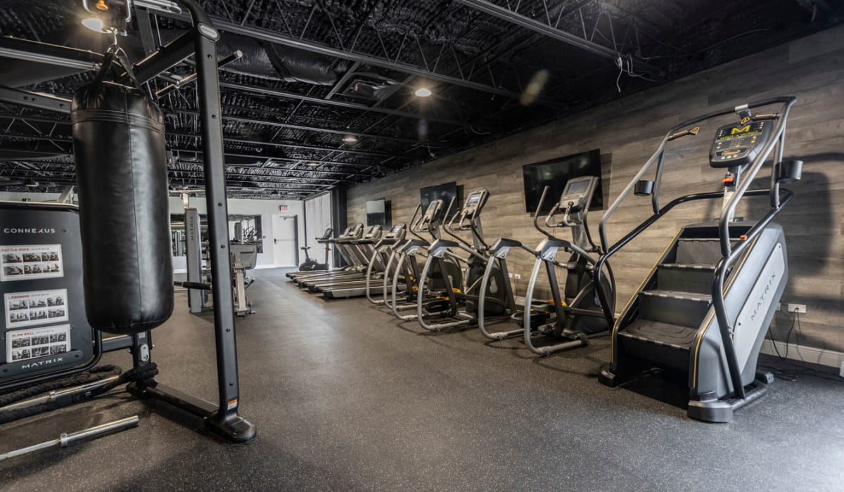 Plenty of cardio workout stations at The Wayland in St Petersburg, Florida