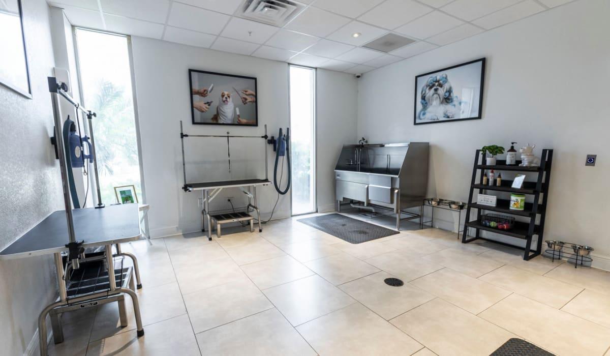 Dog wash station at The Wayland in St Petersburg, Florida