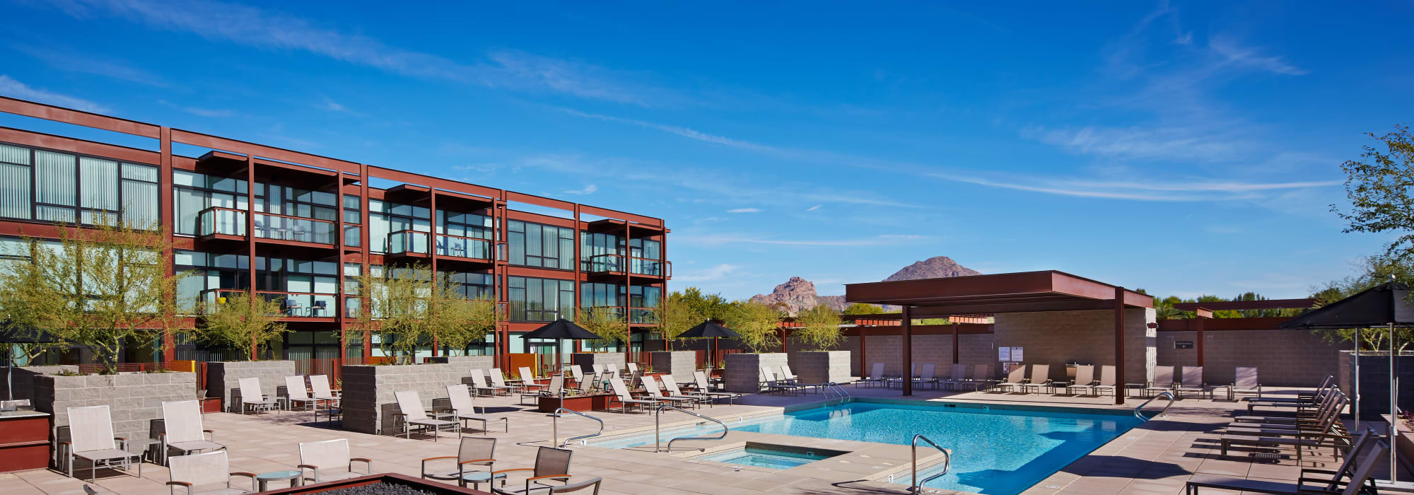 Gorgeous swimming pool area on a beautiful day at Domus in Phoenix, Arizona