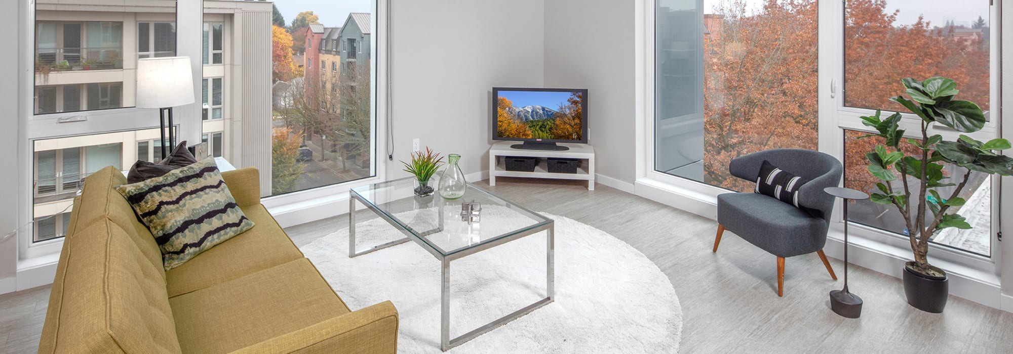 Contact us at Division Terrace in Portland, Oregon
