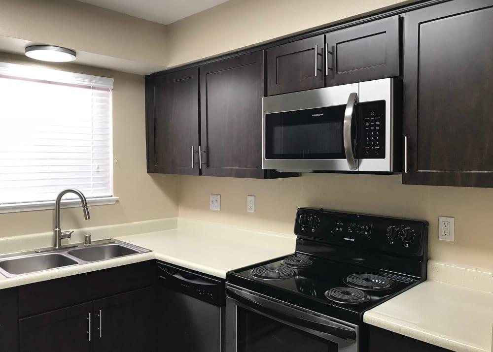 Brown Renovated kitchen