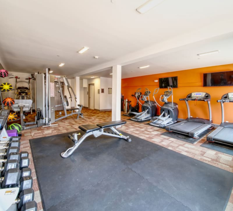 Gym at ONE23 Apartments in Union City, New Jersey