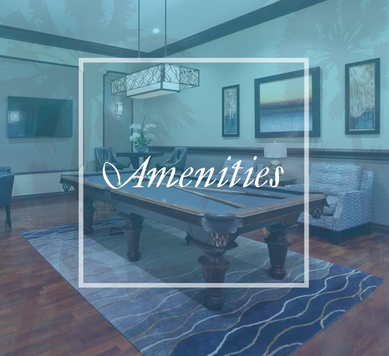 View our extensive list of amenities at San Merano at Mirasol