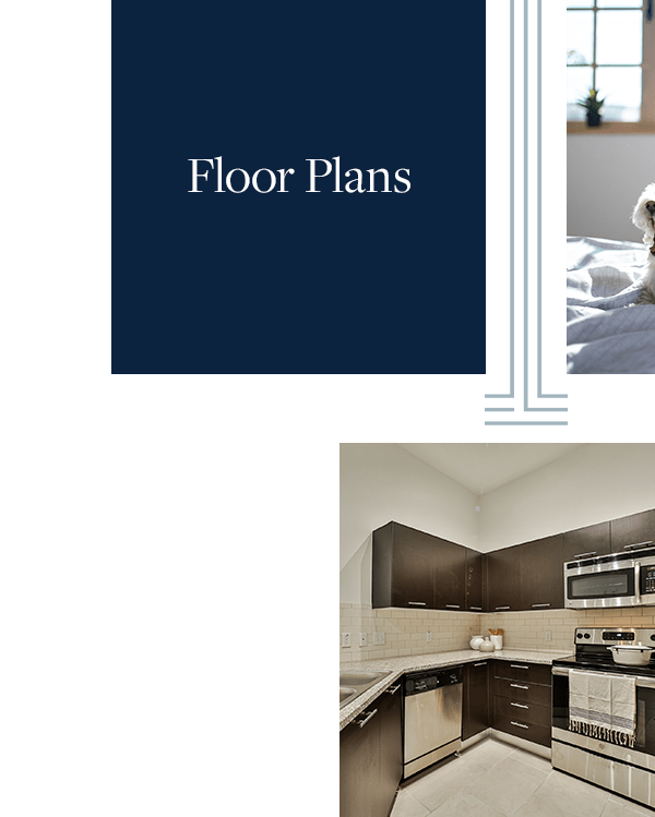 Link to floor plans page of Broadstone Toscano in Houston, Texas