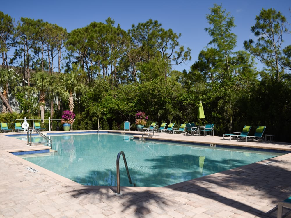Sparkling pool at Meadow Brook Preserve in Naples, FL
