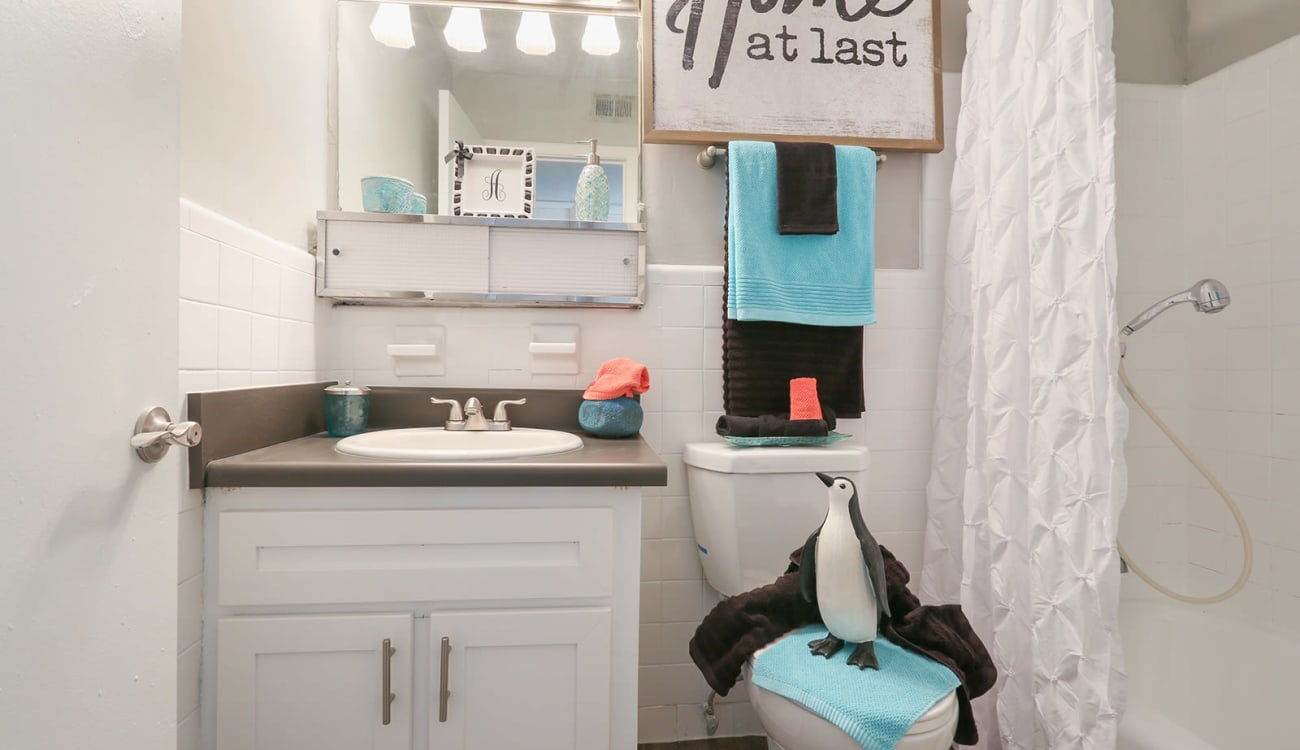 Vanity mirror and extra storage under the sink of a model home's bathroom at Alturas Embry Hills in Doraville, Georgia