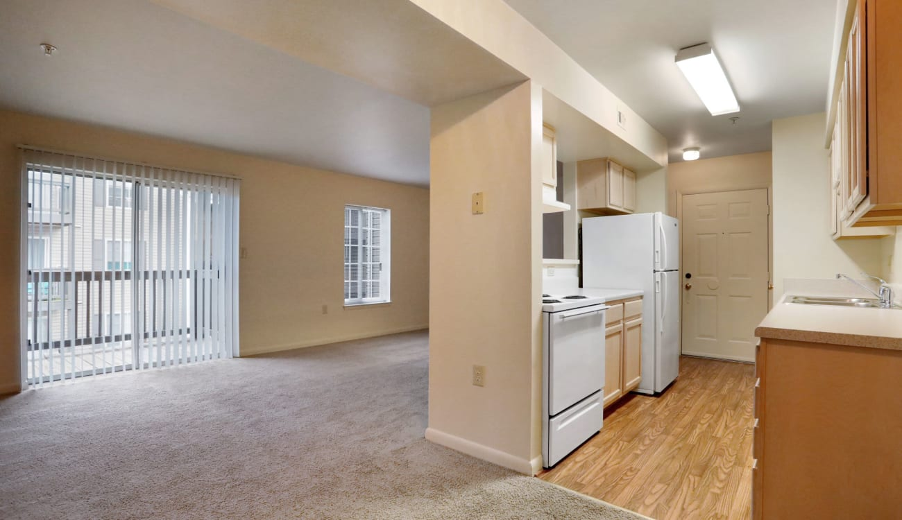 Kitchen with wood-style flooring at Peppertree Apartments in Winchester, Virginia