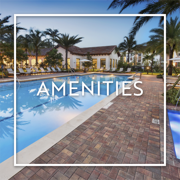 Learn more about our wonderful amenities at Casa Vera