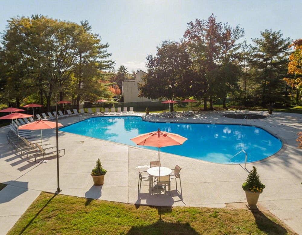 Resort style swimming pool at Chestnut Hill Tower in Philadelphia, Pennsylvania