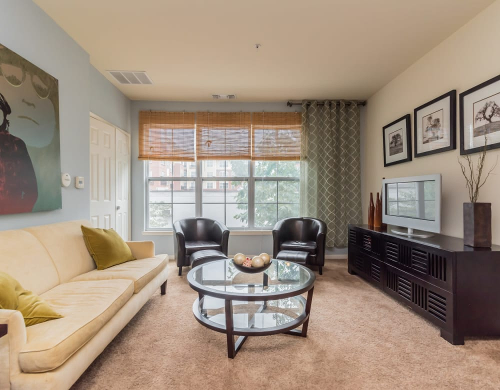 Westville Village Apartments offers a Living Room in New Haven, Connecticut