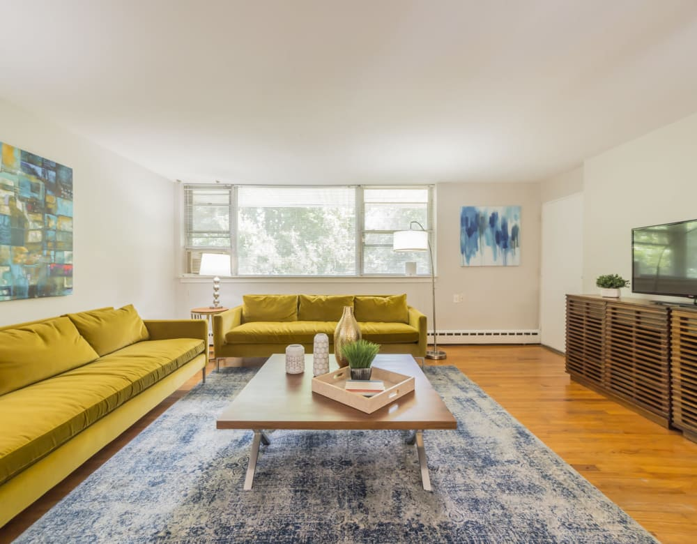 Coffee table on blue area rug with mustard colored couches in stylish living room at Cherokee Apartments in Philadelphia, Pennsylvania