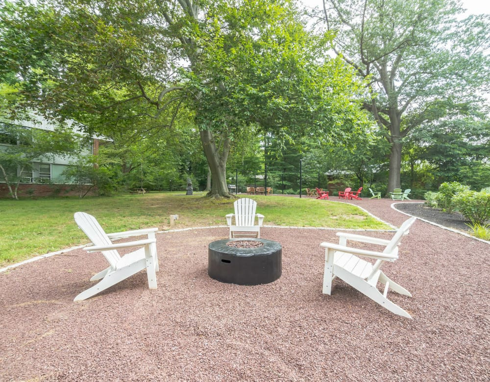 Outdoor fire pit area featuring Adirondack chairs and mature trees at Cherokee Apartments in Philadelphia, Pennsylvania
