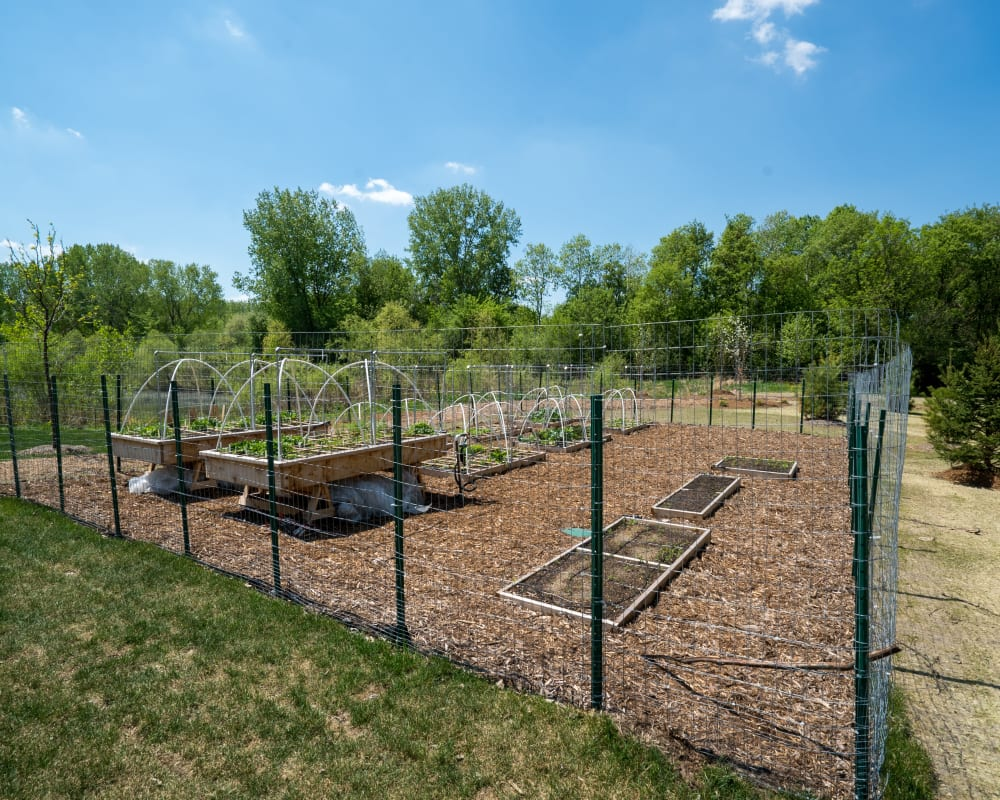 Community garden at Berkshire Central in Blaine, Minnesota