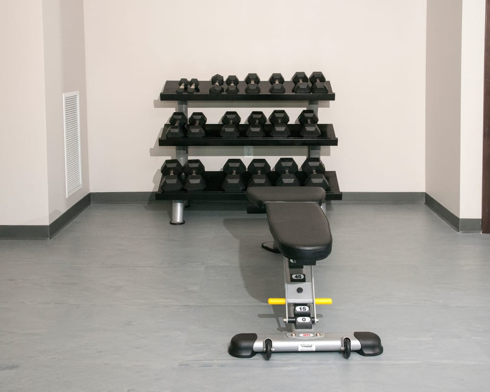 Workout bench and free weights at Berkshire Central in Blaine, Minnesota