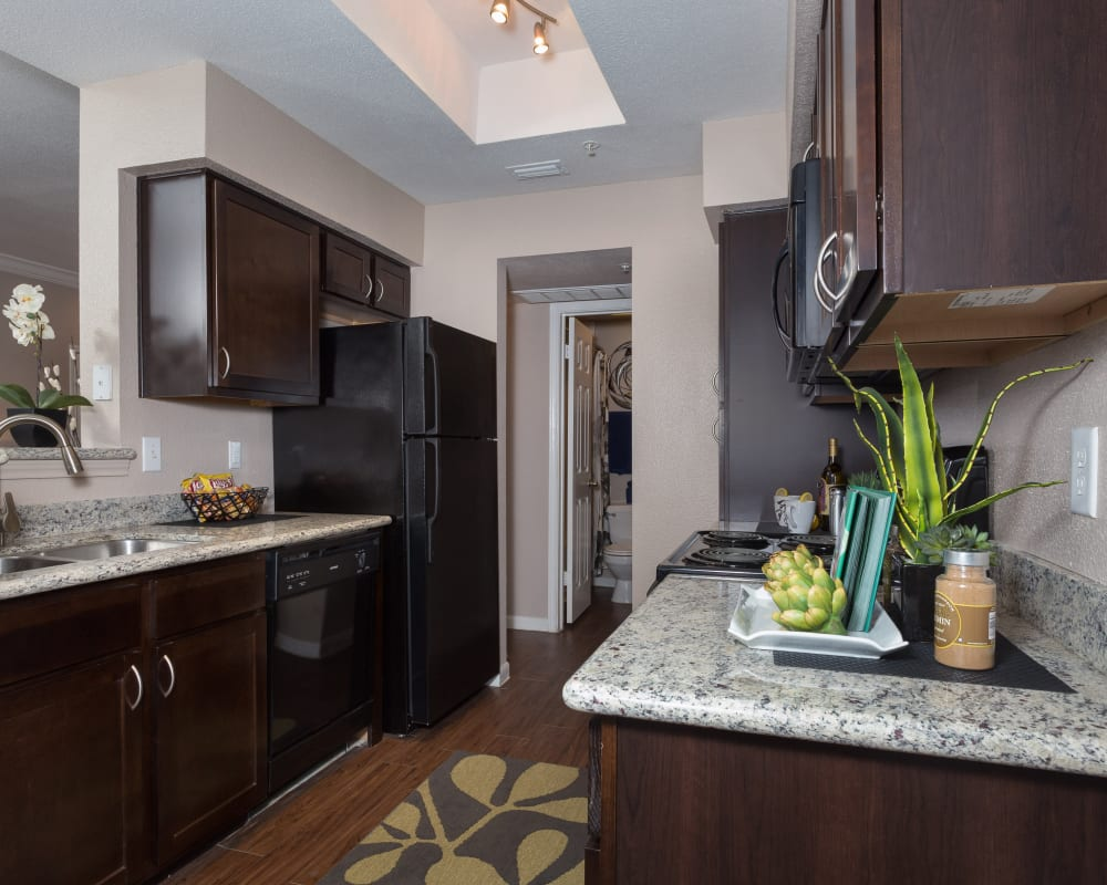 Kitchen with a little plant at Greenbriar Park in Houston, Texas